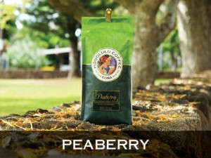 PeaberryParkv3_large